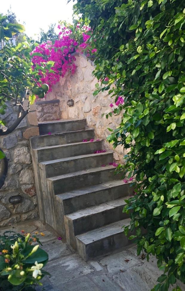 Villa steps